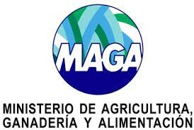 MAGA logo